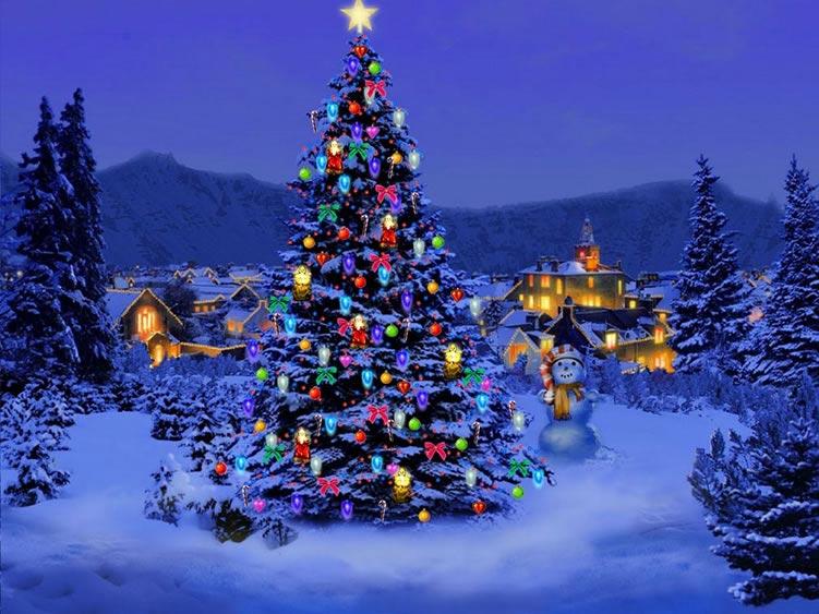 por que armamos el arbolito de navidad el 8 de diciembre