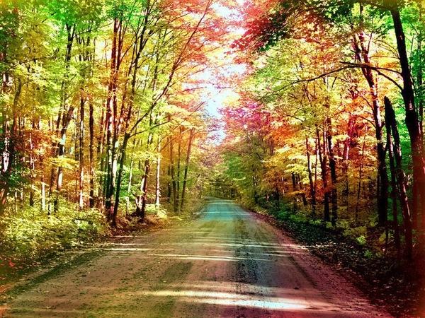 el_camino_de_la_felicidad