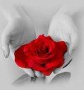 amor y perdon