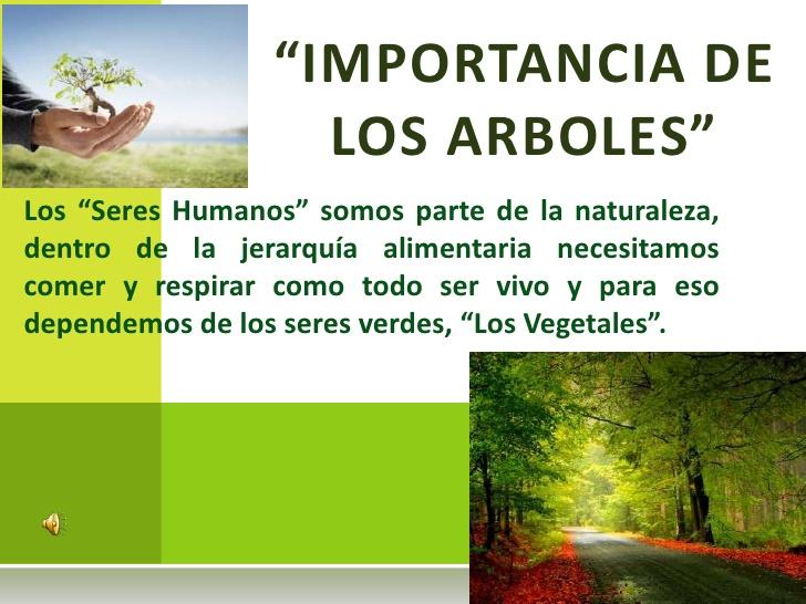 la-importancia-de-los-arboles-1-728
