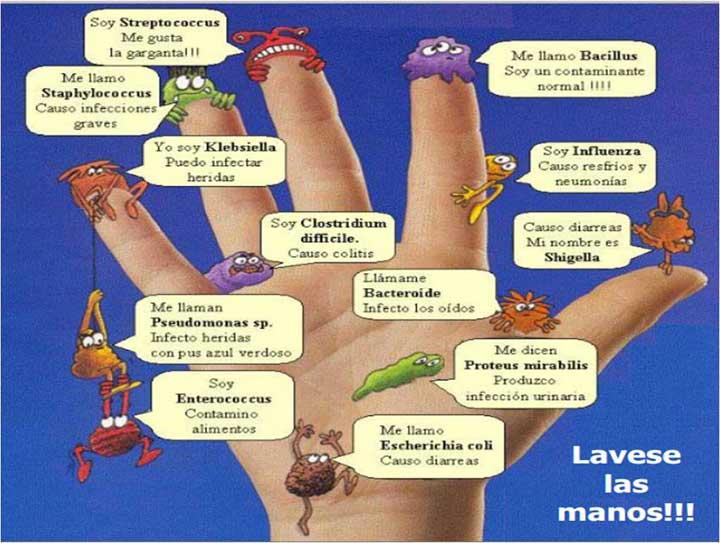 manos-limpias-c-los-germene