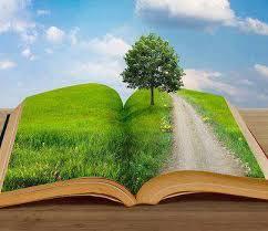 camino de curación